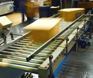 Any business requiring unit loads to be moved, transported, transferred or sorted may benefit from conveyor systems.