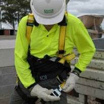 Utility Fall Protection Harness | Workman International