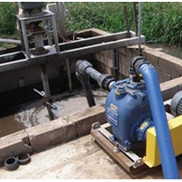 Piggery reduces both maintenance time, costs with wastewater pumps