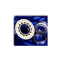 Bearings | Cylindrical Roller