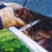 Elevated Gutter Cleaning
