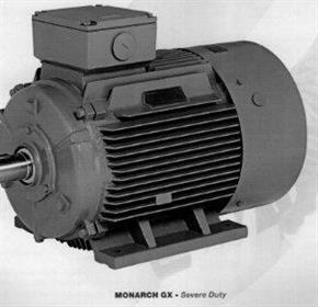 Electric Motors | Teco Monarch