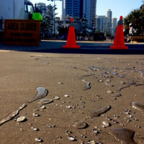 Concrete Shield used on Surfers Esplanade, Surfers Paradise, Qld