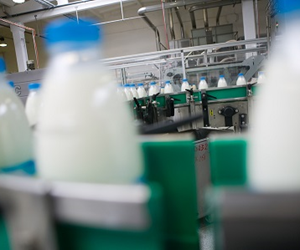 A new hub will find solutions and opportunities for the dairy industry through collaboration.