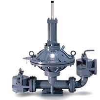 Diaphragm Pumps | P Series Air Driven