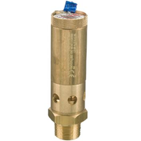Safety Relief Valves | Seetru Range