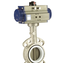 Stainless Steel Butterfly Valve | BFS