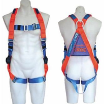 Full Body Harness | ERGO 1100