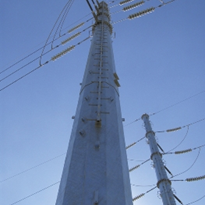 Power Pole | Transmission