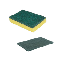 Make cleaning simple with Signet's range of scourers