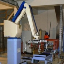Case study: Another Fuji-Ace palletising robot installed