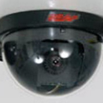 Dome camera - B/W Mini Dome Camera - CC-100302N