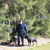 VETEC Man & Dog Teams