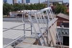 AM-BOSS Cage Access Ladder with Cage & D-Handrails