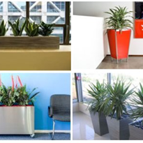 Indoor Plant Containers - Breakout Range