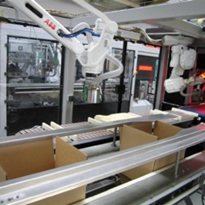 rml p255i Robotic Case Packer