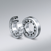 EW Series Cylindrical Roller Bearings
